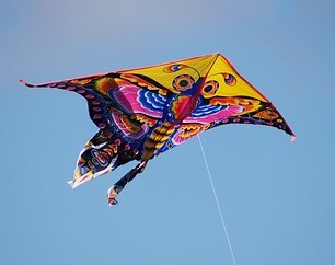 Ode to a butter fly kite